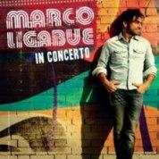 marco-ligabue-concerti-2013