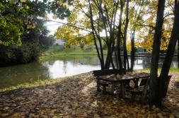 Parco-ALDO-MORO-Agrate-Brianza-a14885340
