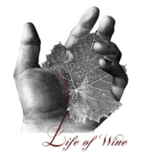 life_of_wine_viaggio_nelle_eta_del_vino